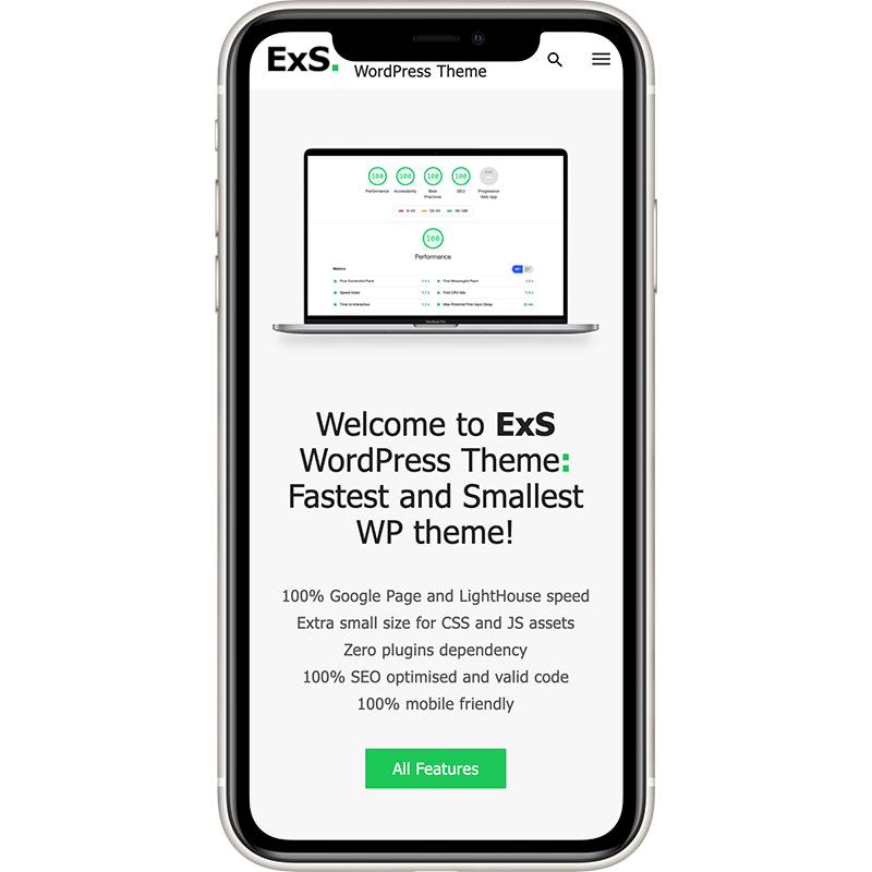 ExS is fastest and smallest WordPress theme